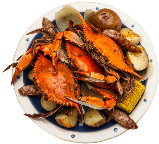 Plate of crab