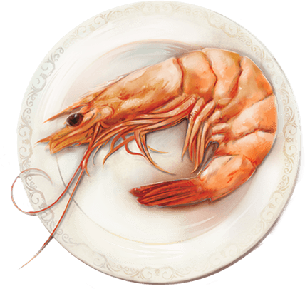 American Wild Shrimp on a plate